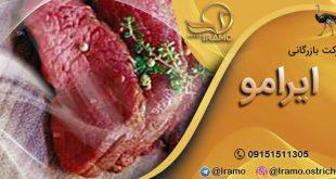 بازار فروش گوشت شترمرغ